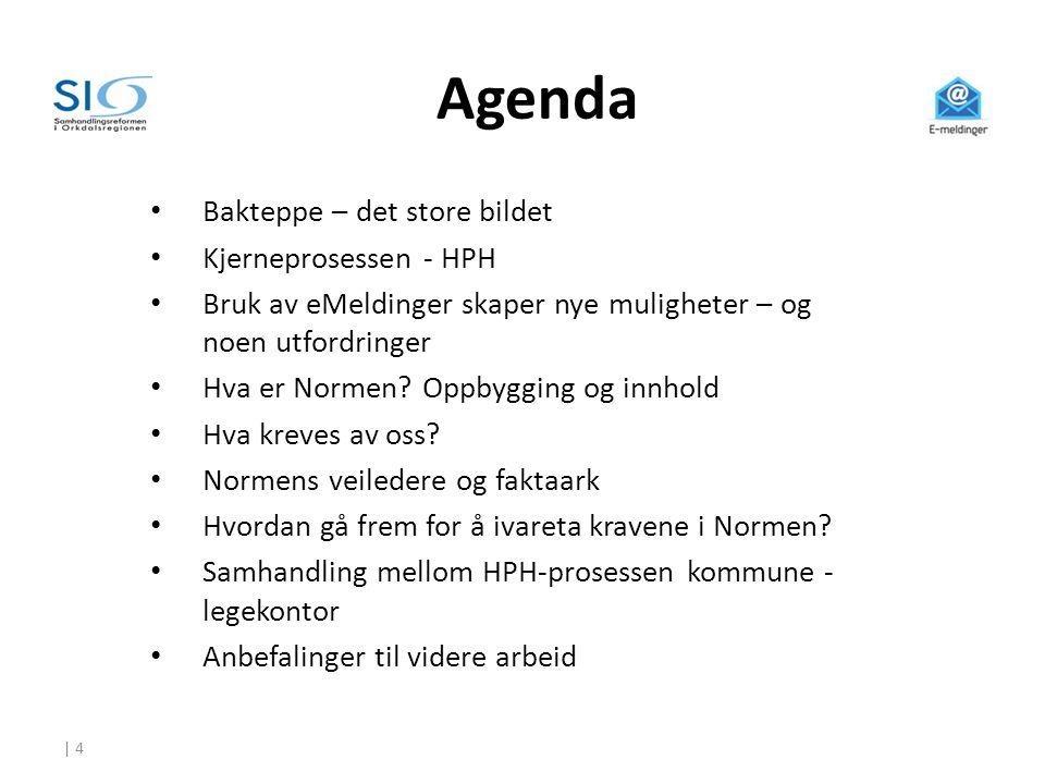 | 4 Agenda • Bakteppe – det store bildet • Kjerneprosessen - HPH • Bruk av eMeldinger skaper nye muligheter – og noen utfordringer • Hva er Normen? Op