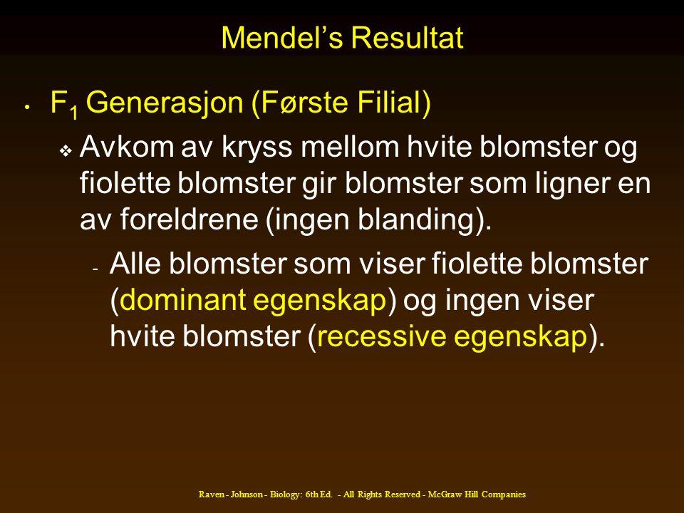 Mendel's Resultat • F 1 Generasjon (Første Filial)  Avkom av kryss mellom hvite blomster og fiolette blomster gir blomster som ligner en av foreldren