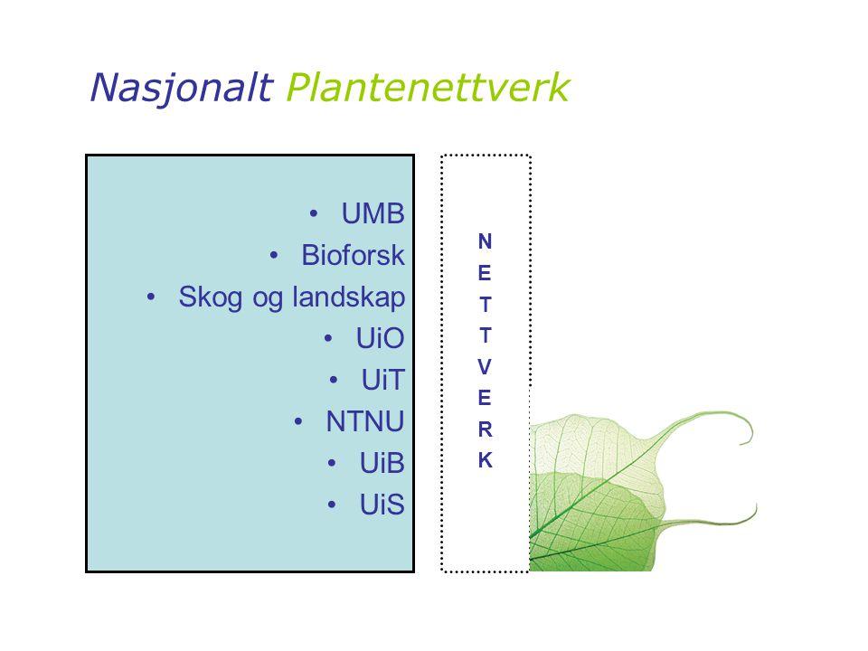 Nasjonalt Plantenettverk NETTVERKNETTVERK •UMB •Bioforsk •Skog og landskap •UiO •UiT •NTNU •UiB •UiS