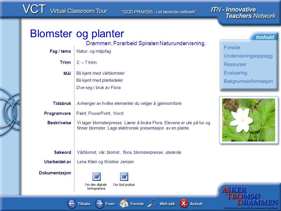 Blomster og planter Drammen: Forarbeid Spiralen Naturundervisning, Dokumentasjon Utarbeidet avLena Kilen og Kristine Jensen Bli kjent med vårblomster