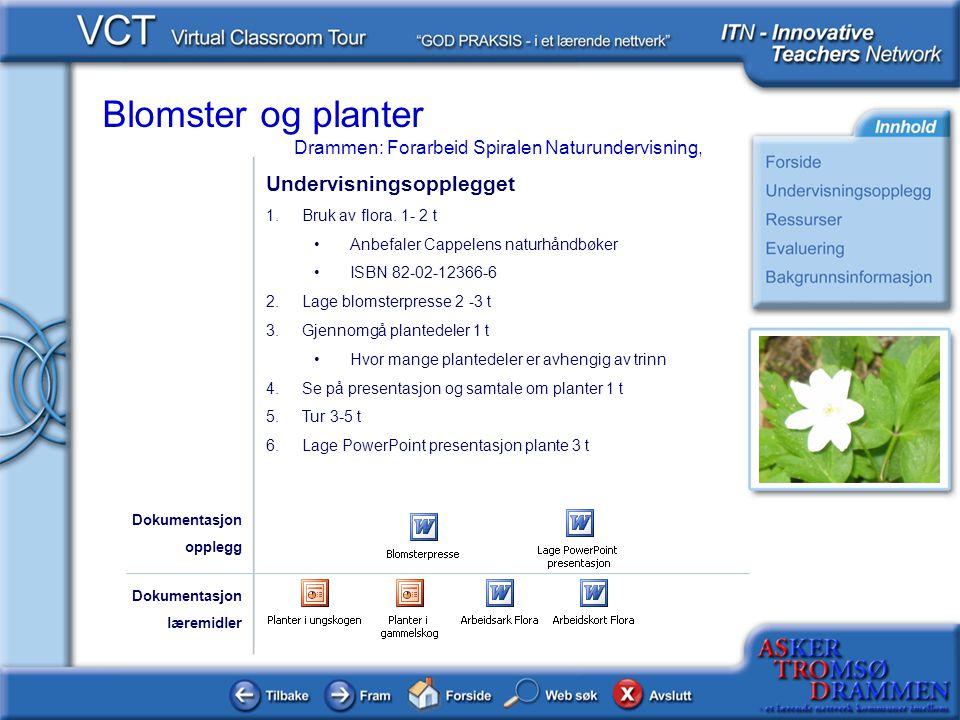 Blomster og planter Drammen: Forarbeid Spiralen Naturundervisning, Undervisningsopplegget 1.Bruk av flora. 1- 2 t •Anbefaler Cappelens naturhåndbøker