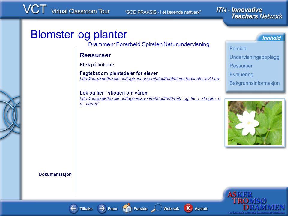 Blomster og planter Drammen: Forarbeid Spiralen Naturundervisning, Ressurser Klikk på linkene: Fagtekst om plantedeler for elever http://norsknettskol