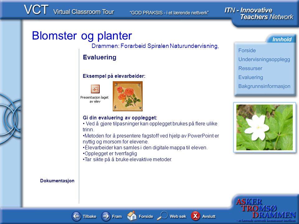 Blomster og planter Drammen: Forarbeid Spiralen Naturundervisning, Evaluering Eksempel på elevarbeider: Gi din evaluering av opplegget: • Ved å gjøre