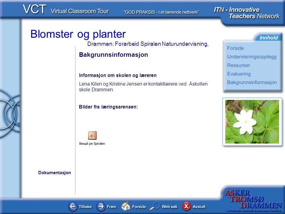 Blomster og planter Drammen: Forarbeid Spiralen Naturundervisning, Bakgrunnsinformasjon Informasjon om skolen og læreren Lena Kilen og Kristine Jensen