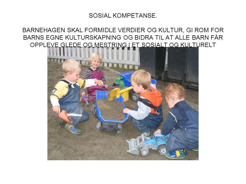SOSIAL KOMPETANSE HANDLER OM Å KUNNE SAMHANDLE POSITIVT MED ANDRE I ULIKE SITUASJONER.
