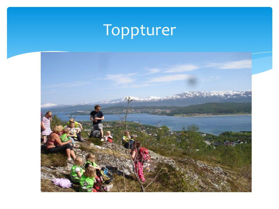 Toppturer