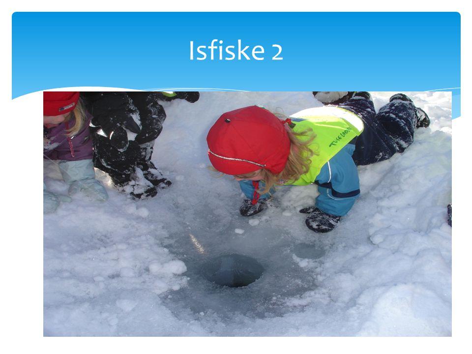 Isfiske 2