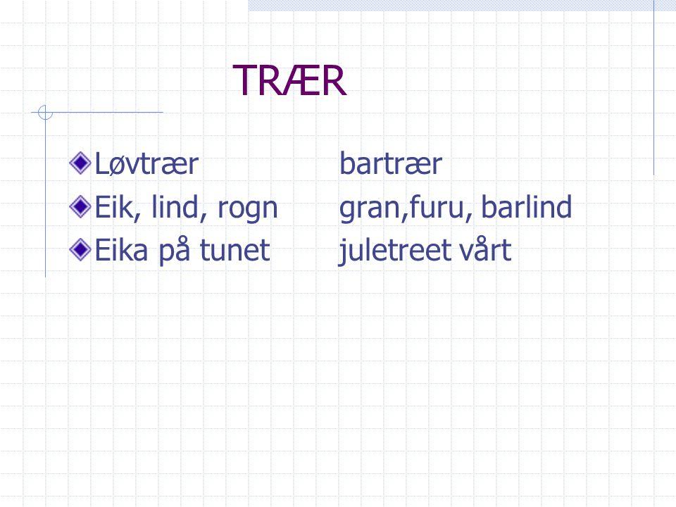 TRÆR Løvtrærbartrær Eik, lind, rogn gran,furu, barlind Eika på tunetjuletreet vårt