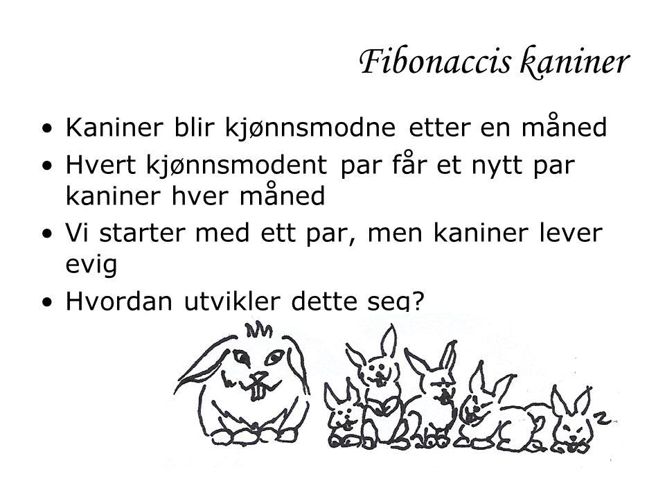 Fibonaccis kaniner •Kaniner blir kjønnsmodne etter en måned •Hvert kjønnsmodent par får et nytt par kaniner hver måned •Vi starter med ett par, men ka