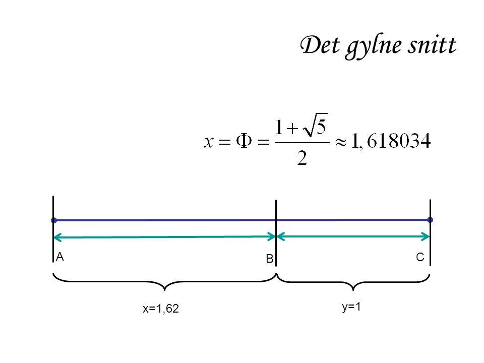 A C B x=1,62 y=1