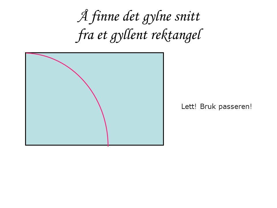 Å finne det gylne snitt fra et gyllent rektangel Lett! Bruk passeren!