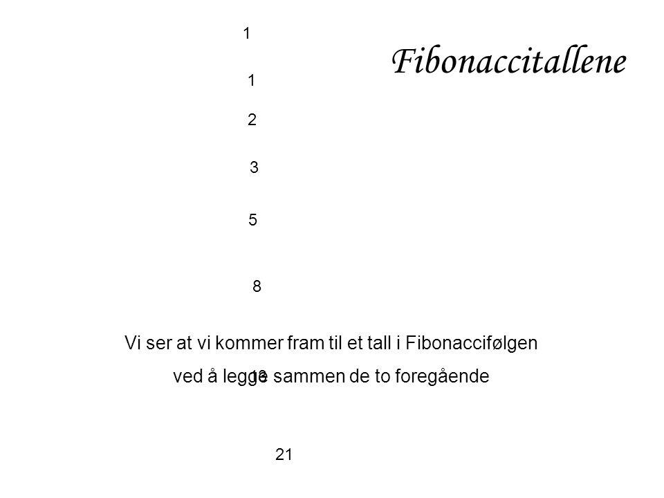 1 1 2 3 5 8 13 21 Fibonaccitallene Vi ser at vi kommer fram til et tall i Fibonaccifølgen ved å legge sammen de to foregående