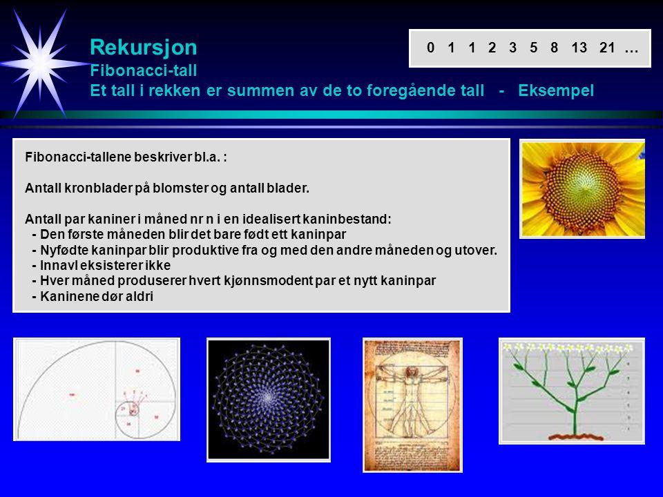Rekursjon Fibonacci-tall Et tall i rekken er summen av de to foregående tall - Eksempel Fibonacci-tallene beskriver bl.a. : Antall kronblader på bloms