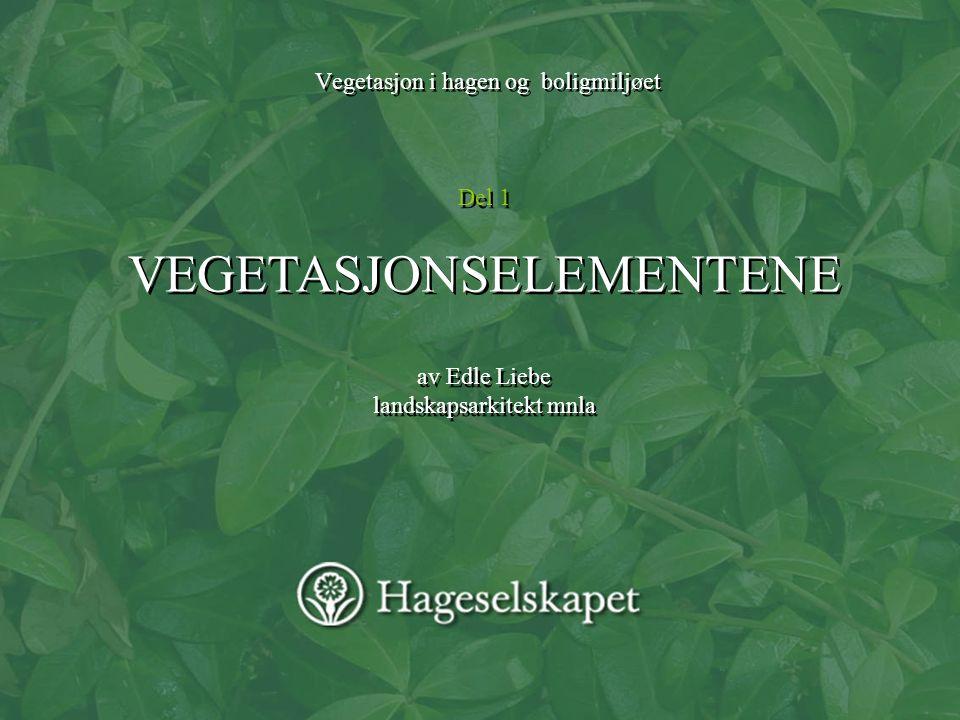 Vegetasjon i hagen og boligmiljøet Del 1 VEGETASJONSELEMENTENE av Edle Liebe landskapsarkitekt mnla