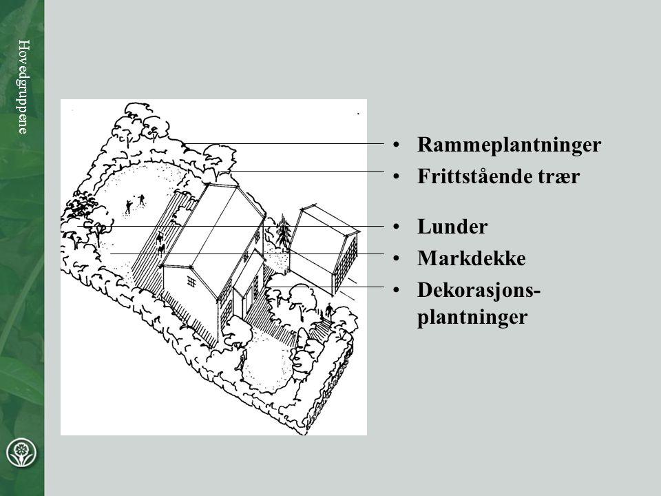 Hovedgruppene •Rammeplantninger •Frittstående trær •Lunder •Markdekke •Dekorasjons- plantninger