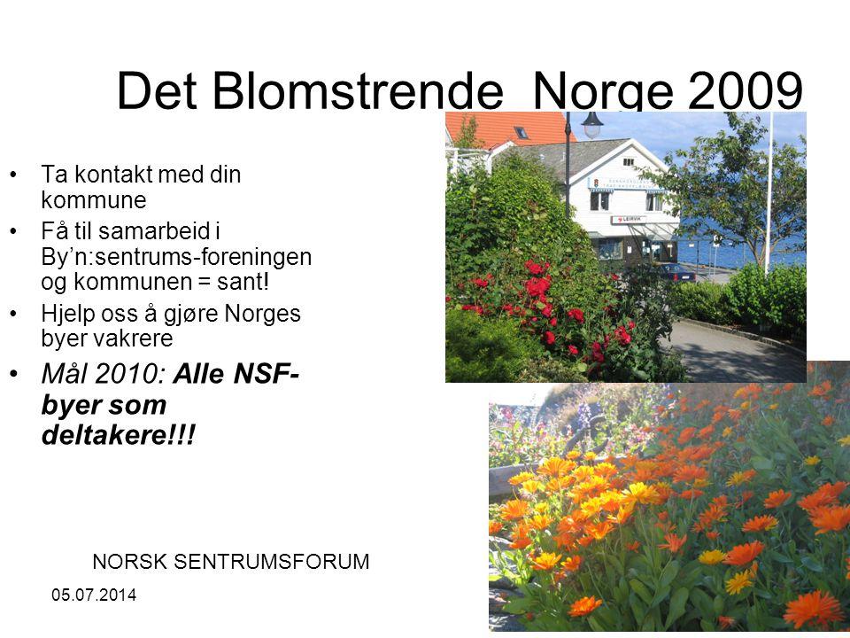 05.07.201414 Det Blomstrende Norge 2009 •Ta kontakt med din kommune •Få til samarbeid i By'n:sentrums-foreningen og kommunen = sant.