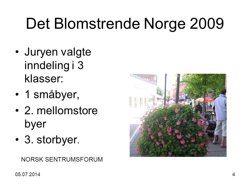 05.07.20144 Det Blomstrende Norge 2009 •Juryen valgte inndeling i 3 klasser: •1 småbyer, •2.