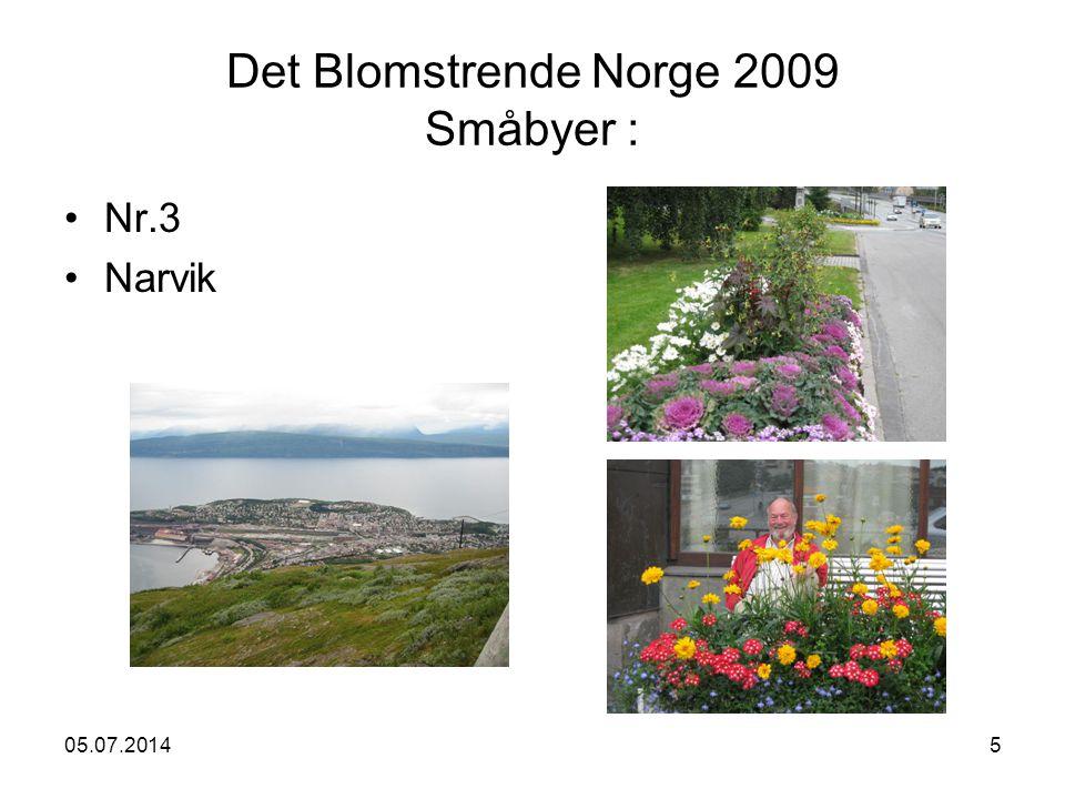 05.07.20145 Det Blomstrende Norge 2009 Småbyer : •Nr.3 •Narvik