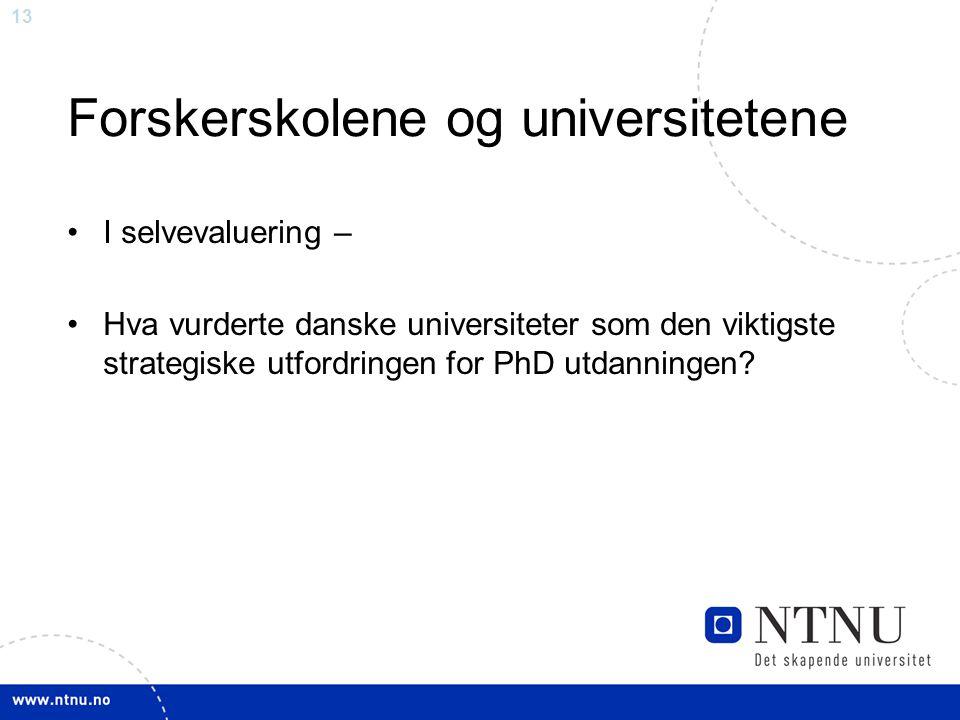 13 Forskerskolene og universitetene •I selvevaluering – •Hva vurderte danske universiteter som den viktigste strategiske utfordringen for PhD utdanningen?