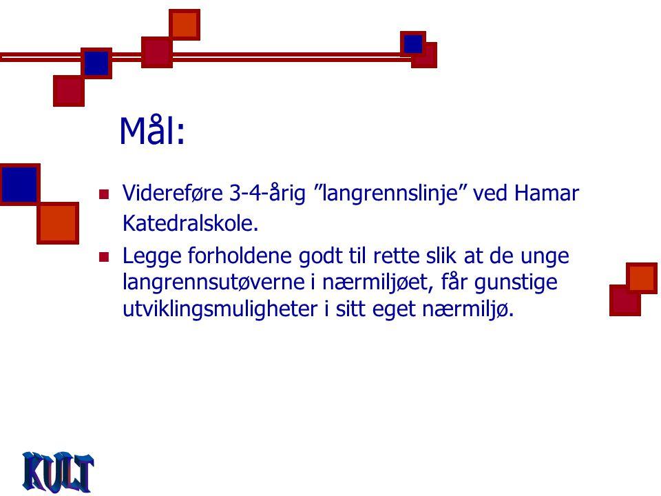 Mål:  Videreføre 3-4-årig langrennslinje ved Hamar Katedralskole.