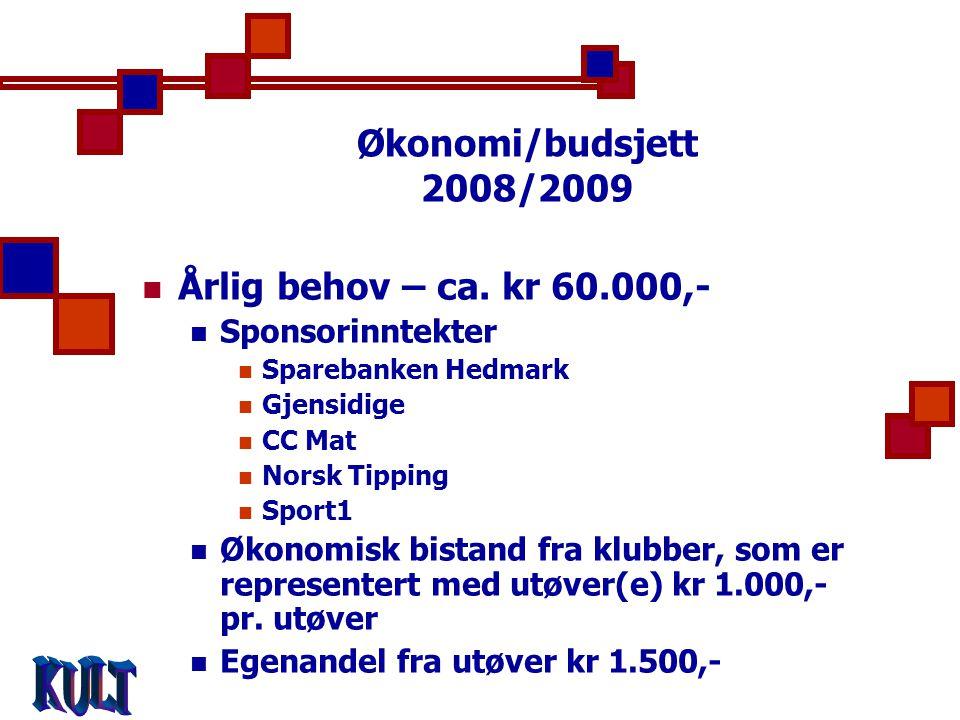 Økonomi/budsjett 2008/2009  Årlig behov – ca.