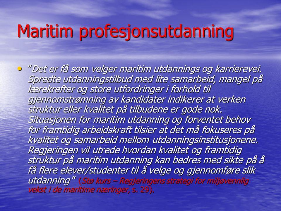Maritim profesjonsutdanning Maritim profesjonsutdanning står overfor en rekke utfordringer som arbeidsgruppen har redegjort for i sin innstilling.