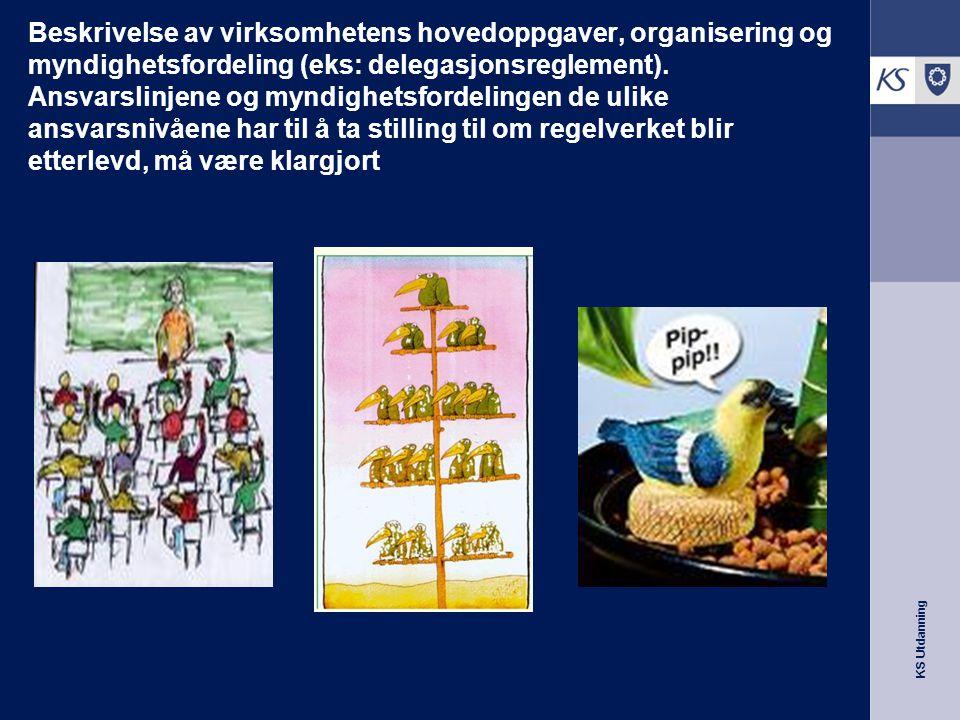 KS Utdanning Beskrivelse av virksomhetens hovedoppgaver, organisering og myndighetsfordeling (eks: delegasjonsreglement). Ansvarslinjene og myndighets