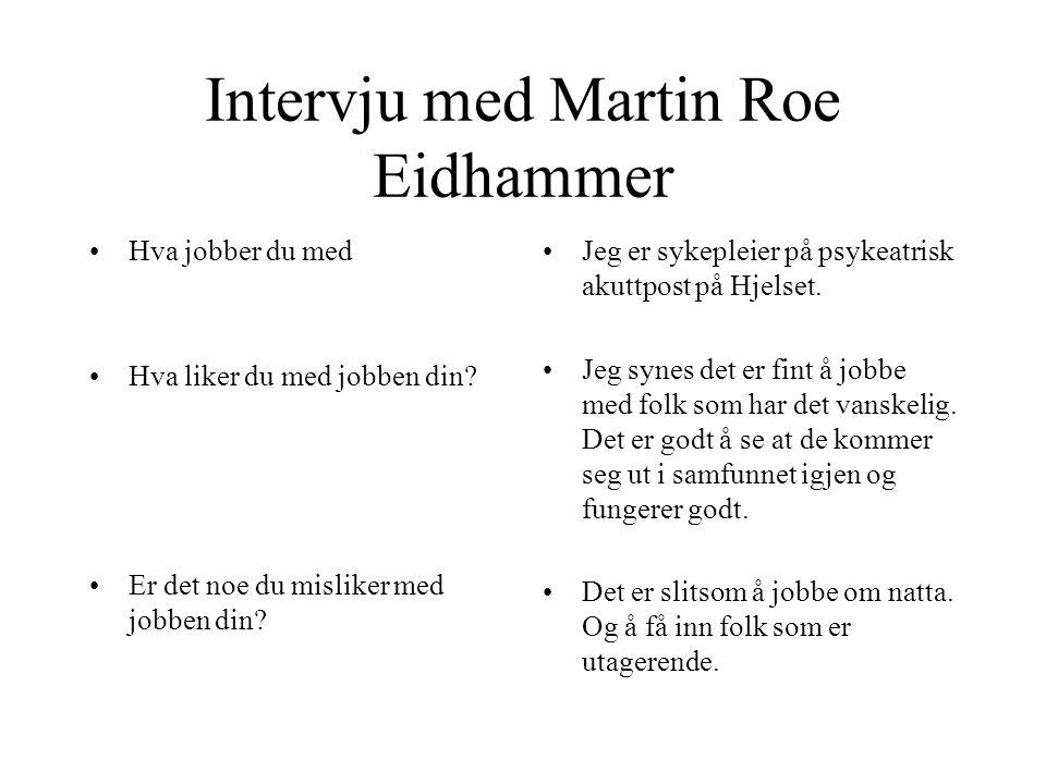 Intervju med Martin Roe Eidhammer •Hva jobber du med •Hva liker du med jobben din.