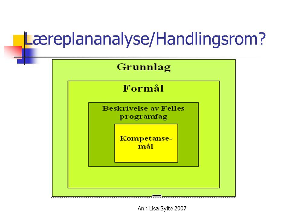 Ann Lisa Sylte 2007 Læreplananalyse/Handlingsrom?