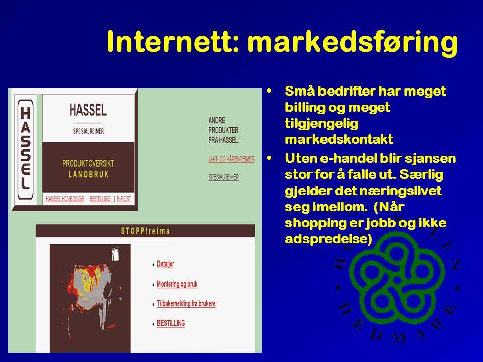 Internett: markedsføring •Små bedrifter har meget billing og meget tilgjengelig markedskontakt •Uten e-handel blir sjansen stor for å falle ut.