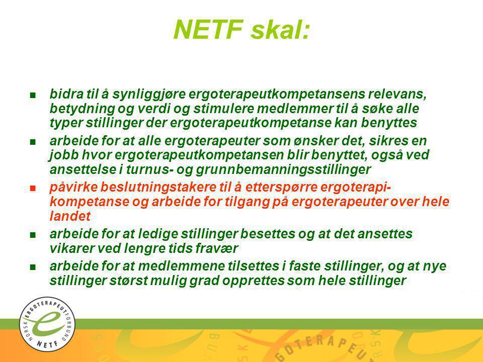 NETF skal: n bidra til å synliggjøre ergoterapeutkompetansens relevans, betydning og verdi og stimulere medlemmer til å søke alle typer stillinger der