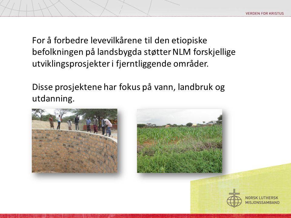 For å forbedre levevilkårene til den etiopiske befolkningen på landsbygda støtter NLM forskjellige utviklingsprosjekter i fjerntliggende områder. Diss