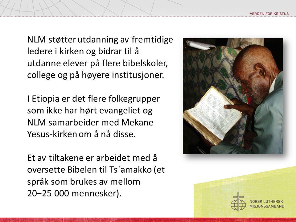 NLM støtter utdanning av fremtidige ledere i kirken og bidrar til å utdanne elever på flere bibelskoler, college og på høyere institusjoner. I Etiopia