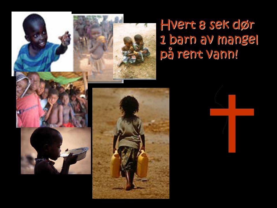Hvert 8 sek dør 1 barn av mangel på rent vann!