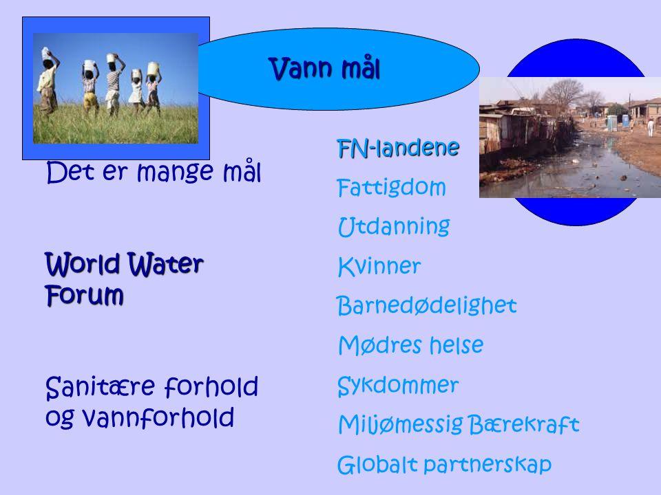 Vann mål Det er mange mål World Water Forum Sanitære forhold og vannforhold FN-landene Fattigdom Utdanning Kvinner Barnedødelighet Mødres helse Sykdom