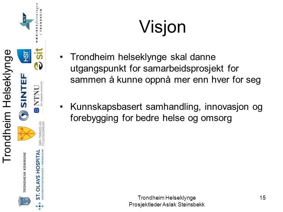 Trondheim Helseklynge Prosjektleder Aslak Steinsbekk 15 Visjon •Trondheim helseklynge skal danne utgangspunkt for samarbeidsprosjekt for sammen å kunn