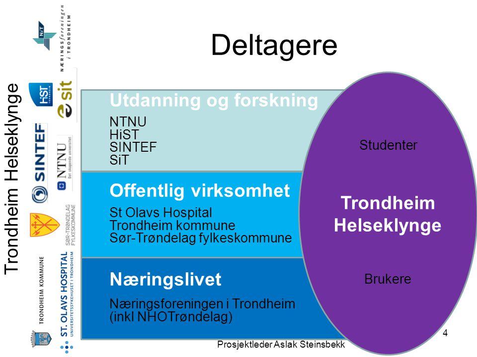 Trondheim Helseklynge Prosjektleder Aslak Steinsbekk 4 Deltagere Utdanning og forskning NTNU HiST SINTEF SiT Offentlig virksomhet St Olavs Hospital Tr