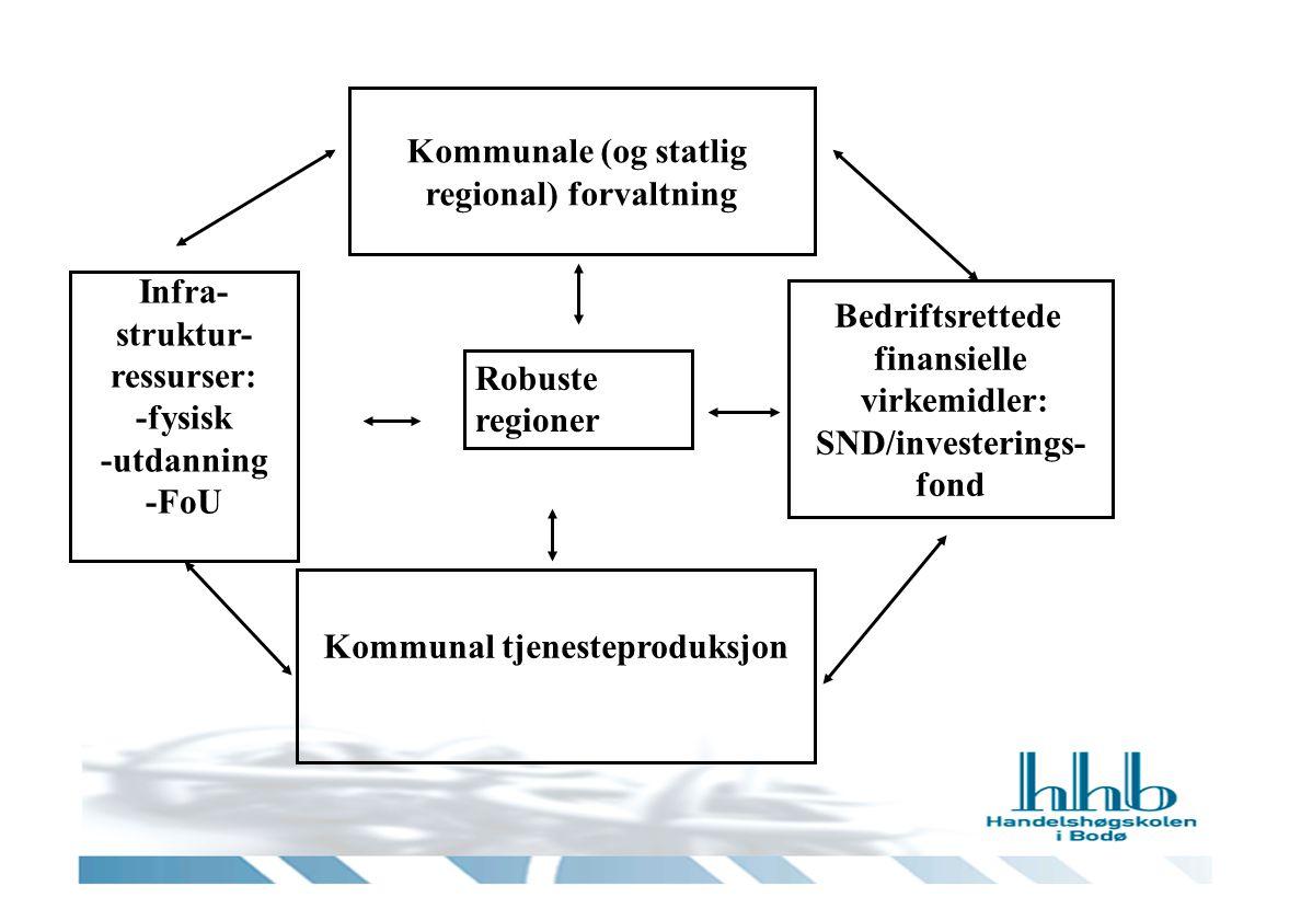 Kommunale (og statlig regional) forvaltning Robuste regioner Bedriftsrettede finansielle virkemidler: SND/investerings- fond Kommunal tjenesteproduksjon Infra- struktur- ressurser: -fysisk -utdanning -FoU