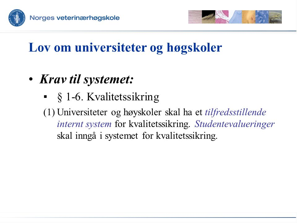 Lov om universiteter og høgskoler •Krav til systemet: ▪§ 1-6. Kvalitetssikring (1)Universiteter og høyskoler skal ha et tilfredsstillende internt syst