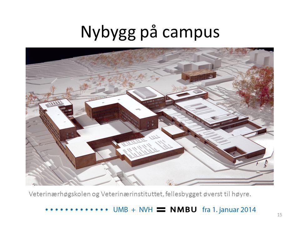 Nybygg på campus Veterinærhøgskolen og Veterinærinstituttet, fellesbygget øverst til høyre. 15