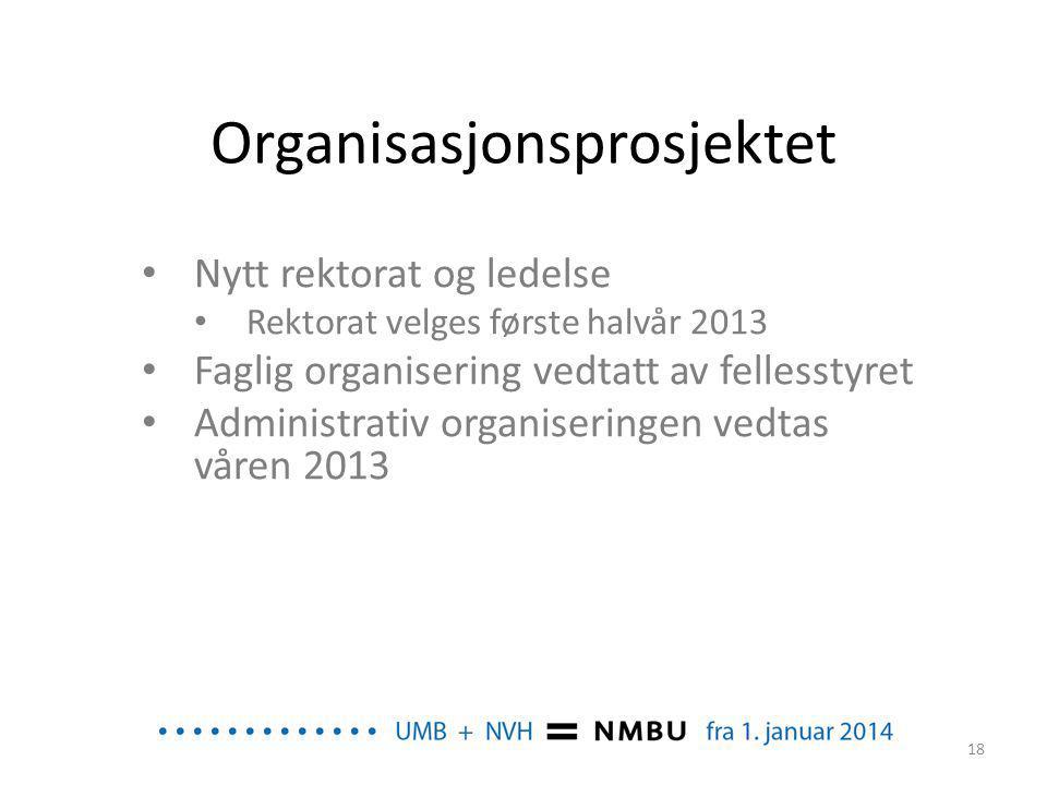 Organisasjonsprosjektet • Nytt rektorat og ledelse • Rektorat velges første halvår 2013 • Faglig organisering vedtatt av fellesstyret • Administrativ