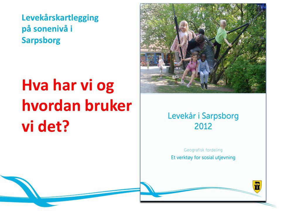 Hva har vi og hvordan bruker vi det? Levekårskartlegging på sonenivå i Sarpsborg
