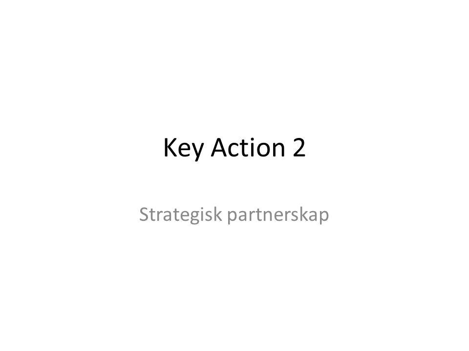 Hva er strategisk partnerskap -Samarbeid innen utdanning, opplæring og ungdomsfeltet -Prosjektene skal omhandle målsetninger, utfordringer og behov innenfor relevante felt -TCA (tidl.
