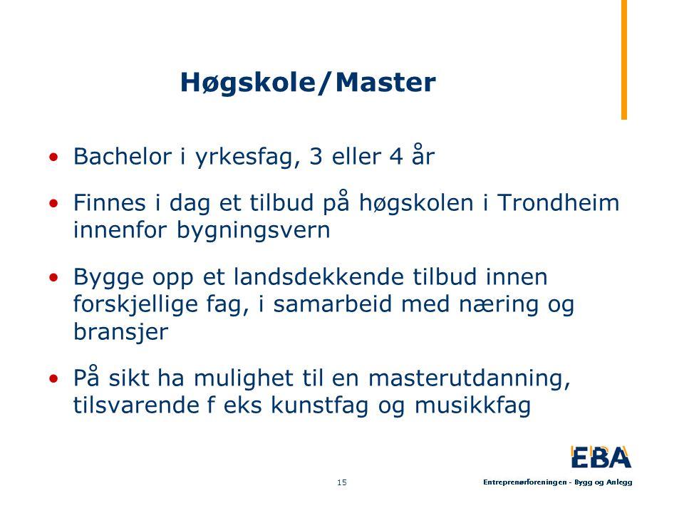 Høgskole/Master •Bachelor i yrkesfag, 3 eller 4 år •Finnes i dag et tilbud på høgskolen i Trondheim innenfor bygningsvern •Bygge opp et landsdekkende tilbud innen forskjellige fag, i samarbeid med næring og bransjer •På sikt ha mulighet til en masterutdanning, tilsvarende f eks kunstfag og musikkfag 15