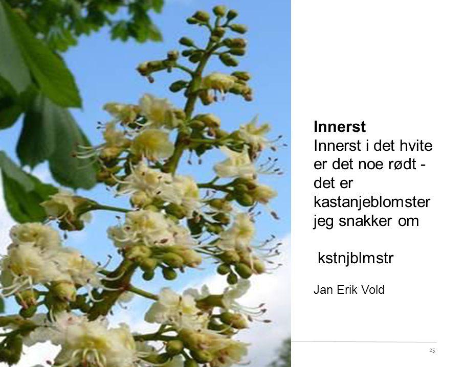 25 Innerst Innerst i det hvite er det noe rødt - det er kastanjeblomster jeg snakker om kstnjblmstr Jan Erik Vold