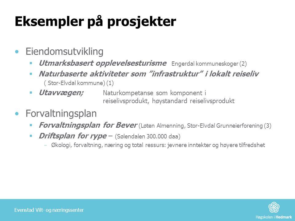 """Eksempler på prosjekter •Eiendomsutvikling  Utmarksbasert opplevelsesturisme Engerdal kommuneskoger (2)  Naturbaserte aktiviteter som """"infrastruktur"""