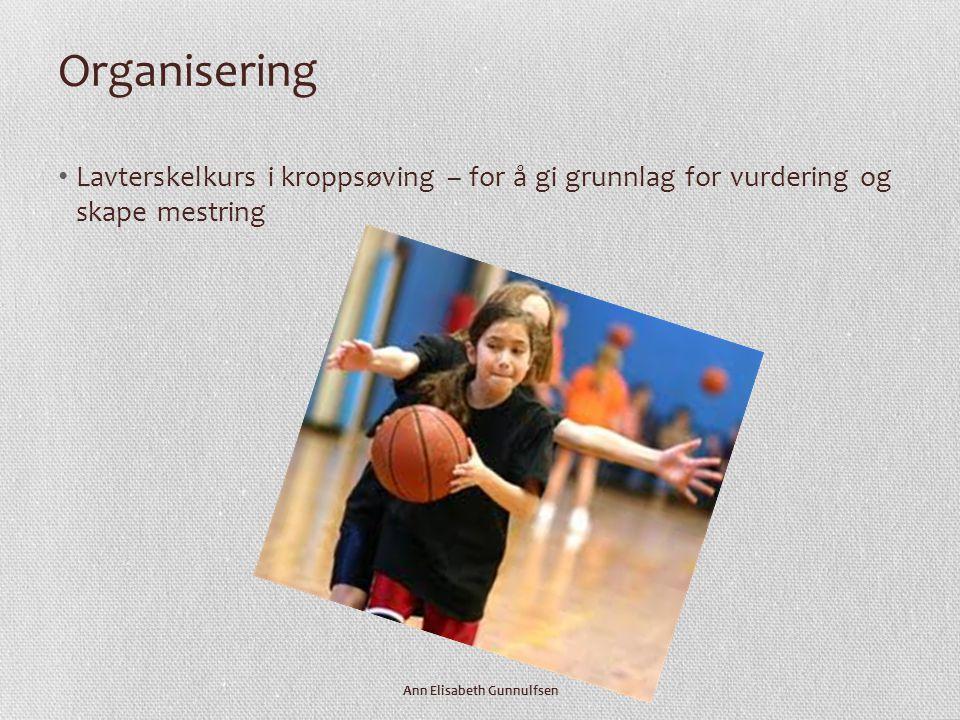 Organisering • Lavterskelkurs i kroppsøving – for å gi grunnlag for vurdering og skape mestring Ann Elisabeth Gunnulfsen