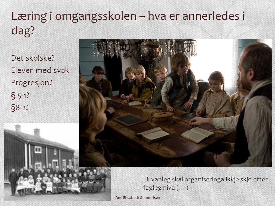 Ann Elisabeth Gunnulfsen Det profesjonelle skjønn – juridiske standarder • Hva fremmer læring.