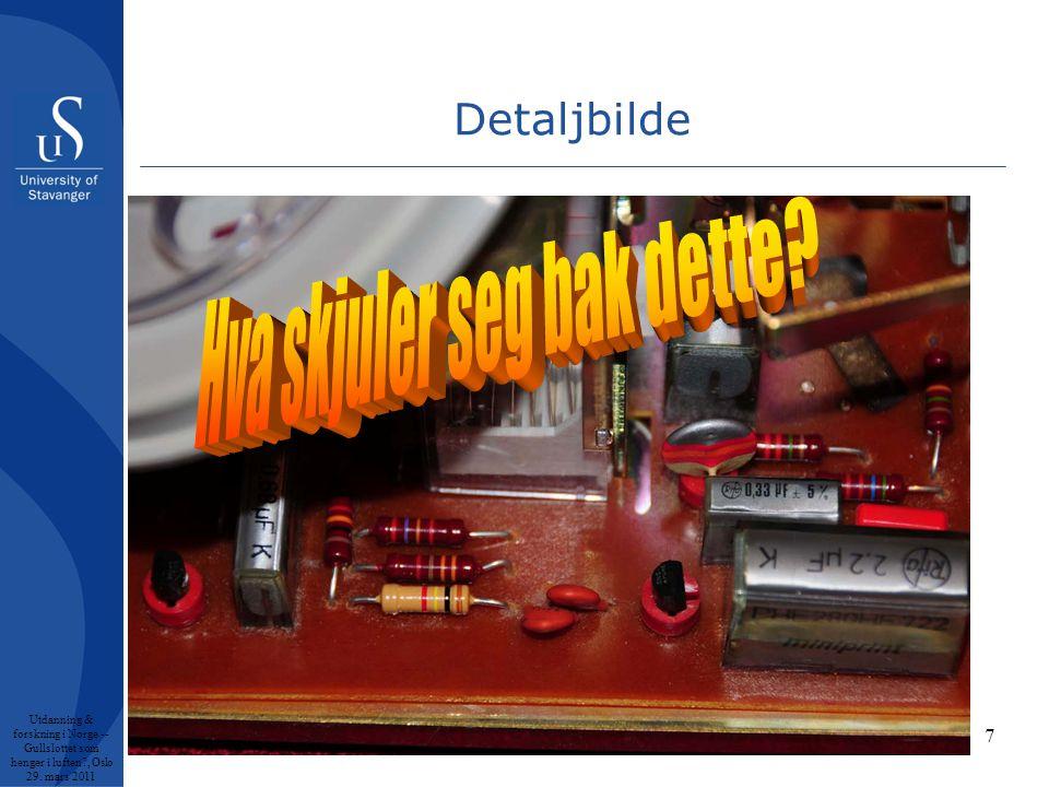 7 Detaljbilde Utdanning & forskning i Norge -- Gullslottet som henger i luften , Oslo 29. mars 2011