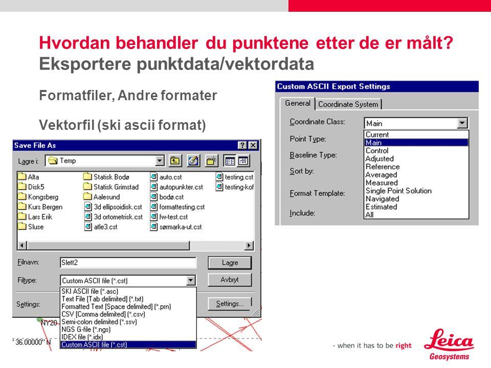 29 Hvordan behandler du punktene etter de er målt? Eksportere punktdata/vektordata Formatfiler, Andre formater Vektorfil (ski ascii format)